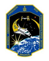 124- NASA STS 126 Space Mission Lapel Pin